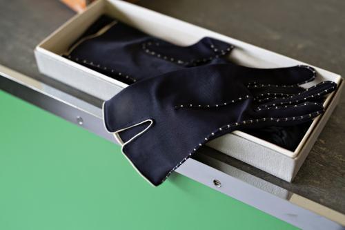 Borstelset en handschoenen. Foto Johannes Schwartz